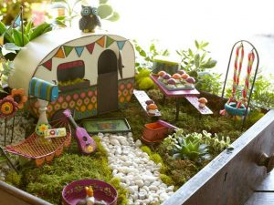 Fairy Garden from Drawer