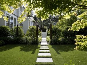 An Artificial Grass for Backyard